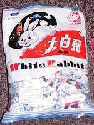 ot-080925-white-rabbit