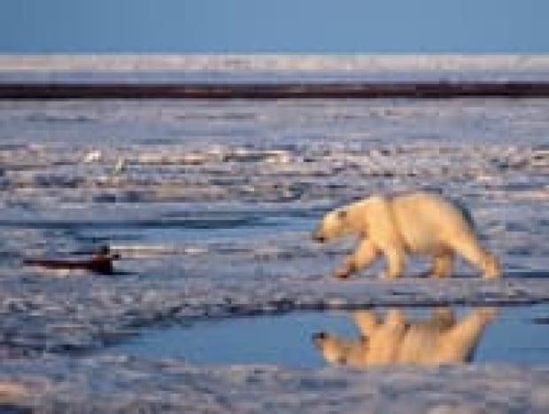 top-global-warming-cp-3545701