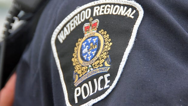 A 19-year-old Kitchener man faces numerous charges in connection to a hit and run that happened Friday.