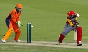 cricket-080208_392