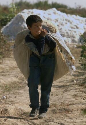 uzbekistan-cotton-cp-RTR4HAX