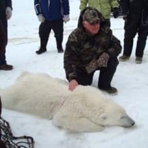 nl-polar-bear-20080330