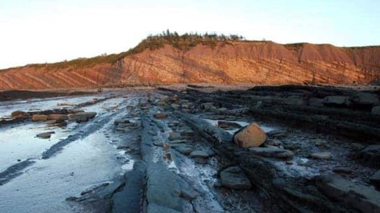 dating fra klipper og fossiler