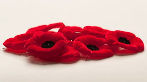 All-purpose image of Remembrance Day poppies, taken Oct, 2013.