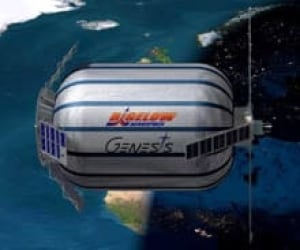 bigelow-cp-1608752