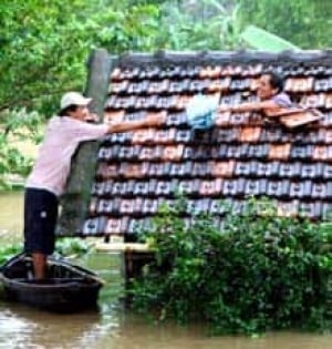 vietnam-flood-cp-3856194