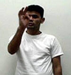 c-plos-one-gesture-070718