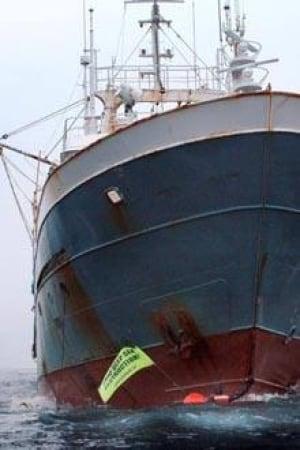 bottom-trawler-cp-1912571