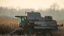 Harvest 20121122
