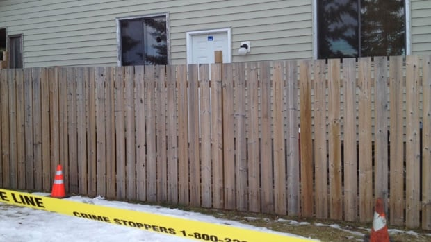 Police are investigating what they believe was a targeted shooting of a house in northeast Calgary early Wednesday morning.
