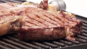 Big slab of meat