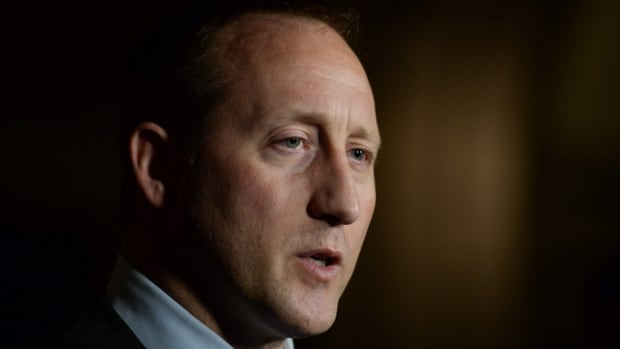 Child psychology experts say that the anti-cyberbullying legislation tabled by Justice Minister Peter MacKay on Nov. 20 doesn't look at the causes of online teasing.