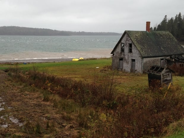 Deer Island coastline