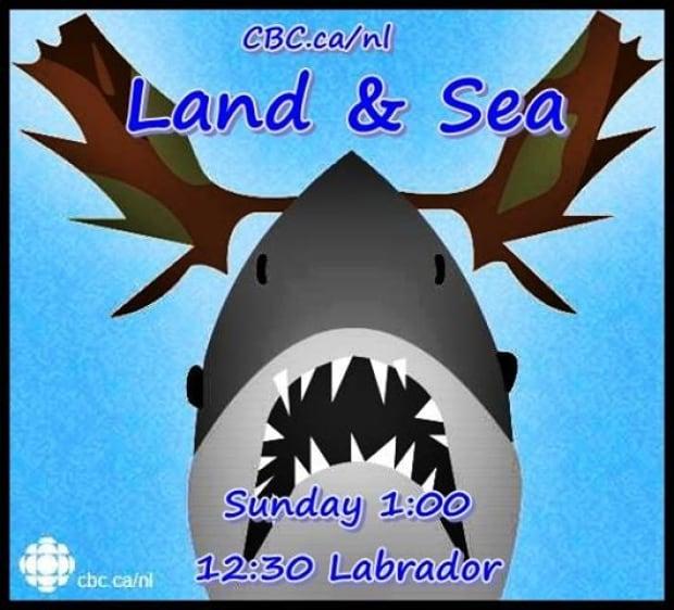 Land and Sea meme