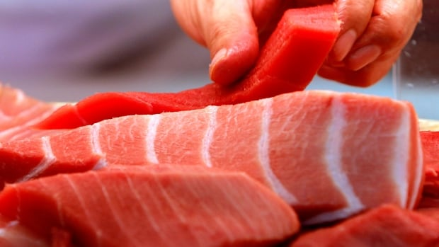 "A sushi chef picks a fillet of red tuna, or ""akami,"" next to fillets of high-quality fatty Atlantic bluefin tuna at a Sushi-Zanmai sushi restaurant in Tokyo, Japan. Scientists said there is little clear science on the health of the stock and that countries should hold off raising the quota until more is known about the abundance of the immense fish, which are highly sought for sushi."
