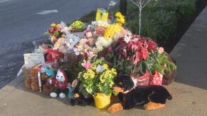Pitt Meadows memorial