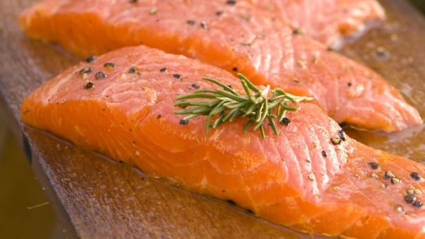 AquaBounty says once its genetically modified salmon is harvested, it cannot be distinguished from regular salmon.