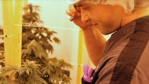 Darryl Hudson with medical marijuana plants
