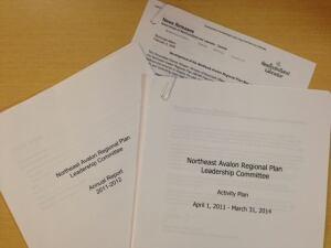 Northeast Avalon Regional Plan documents
