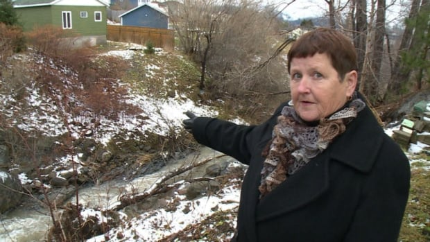 Corner Brook resident Joan Hanlon points to the damage behind her home, which is dangerously close to collapsing into a brook.