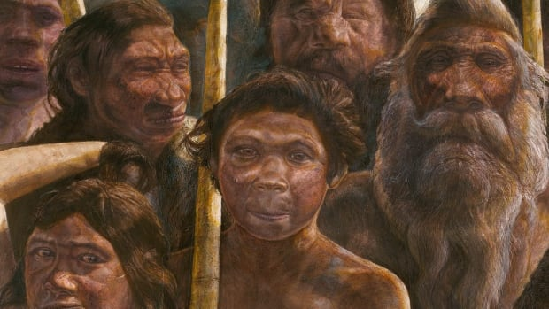 This artist's rendering provided by Madrid Scientific Films shows hominins whose remains were found at a site in Spain called Sima de los Huesos. The fossils have anatomical features reminiscent of Neanderthals.