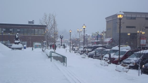 Meteorologist Ross MacDonald says 25 to 40 centimetres of snow fell across the southern part of the Yukon this week and 36 cm fell at the Whitehorse airport.