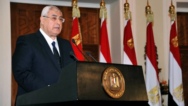 Interim President Adly Mansour is calling on Egyptians to vote yes for a document he described as setting the path toward a modern democratic state, as the country plans to hold a key referendum on the amended constitution next month.