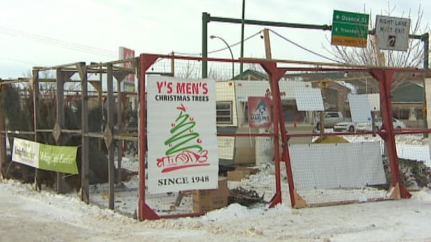 A volunteer at the Y's Men's Christmas tree lot at Victoria Square Mall discovered 30 trees missing.