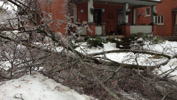 Branches weighed down by ice downed power lines and caused power outages across Waterloo Region after the ice storm that struck on Dec. 22.
