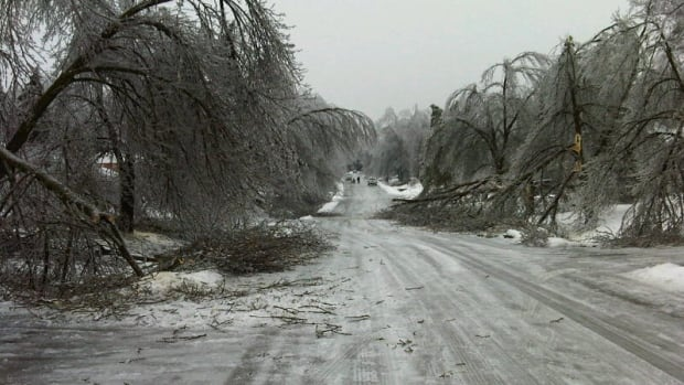 North Flamborough was one area in Hamilton hit hard by the weekend's ice storm. Thousands of customers in the city's suburban and rural area lost electricity after frozen tree branches fell onto power lines.