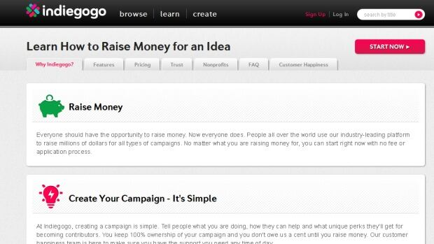 Indiegogo is a popular crowdsourcing website.