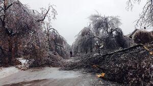 brampton-ice-storm-2013