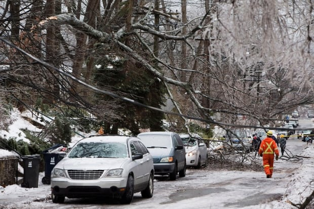 Ice storm damage near Kingston Road and Victoria Park Avenue