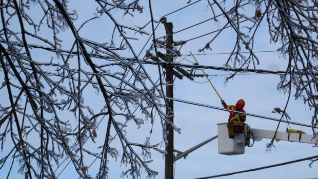 A Toronto Hydro workman knocks ice off a frozen power line following an ice storm in Toronto, December 23, 2013.