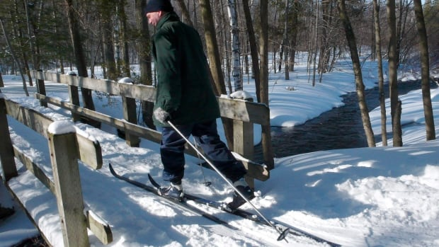 This March 9, 2008 file photo shows a cross-country skier along the Bruce Trail on the Niagara Escarpment in Milton.