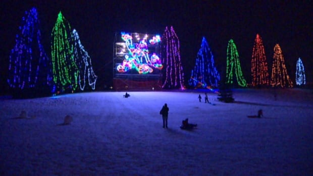 The Lions' Festival of Lights continues at Confederation Park until Jan. 8, but below are a few other suggestions for things to do in Calgary this weekend.