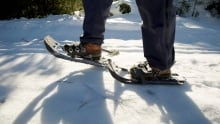 Outdoors Mount Adams XC Skiing