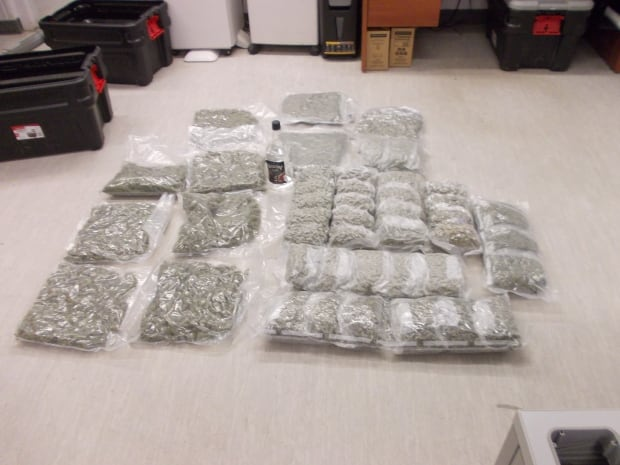 Marijuana seized in Kugluktuk
