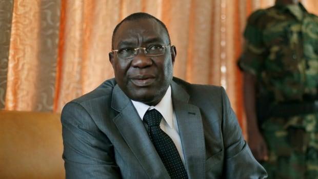 Michel Djotodia Central African Republic President Steps