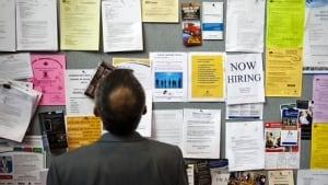 Man hunts job board