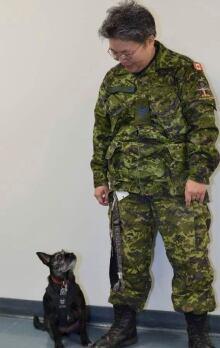 PTSD Dog On Plane 20140113