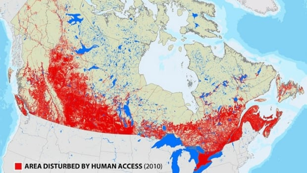 Global Forest Watch has put together a national picture of how Canada's natural landscape has been disturbed by human access.