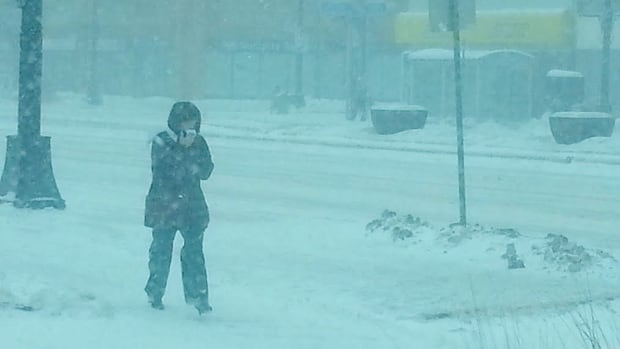 A woman walks on Portage Avenue on Wednesday, as snow swirls around her.
