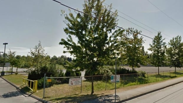 The District of Maple Ridge wants to remove a 150-acre parcel of land southeast of 105 Avenue from the Agricultural Land Reserve so it can be developed for shopping and a business park.