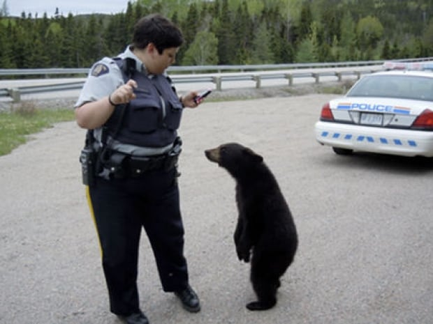 Suzanne Bouque and bear cub in June 2011