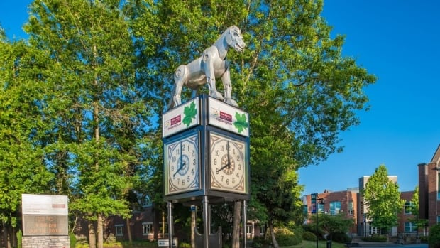 """The Beast"" clock and horse sculpture is located in front of Maple Ridge Municipal Hall and RCMP building."