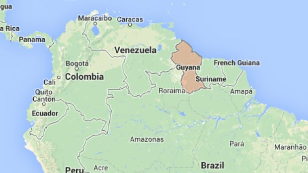 A Canadian pilot is among the two people whose bodies were found after a small plane crashed in the South American country of Guyana Saturday.