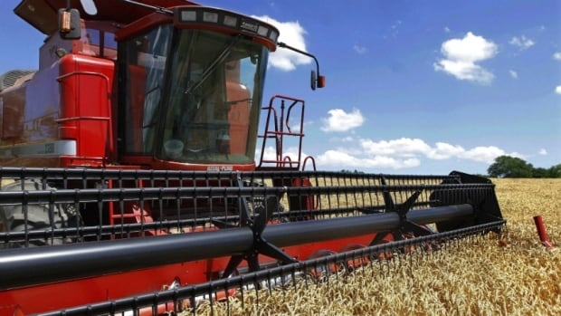 Grain farmers in Alberta say competition for rail shipments from the oil industry is delaying the effort to get last fall's record harvest to markets.