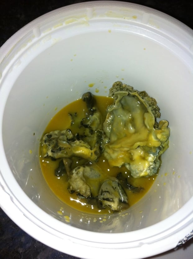Moldy juice