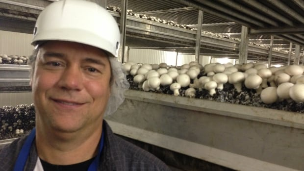 Burton Loveday is the owner and president of Manitoba's Loveday Mushroom Farms.